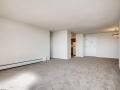 1029 E 8th Ave 1102 Denver CO-large-007-004-Living Room-1500x1000-72dpi