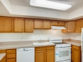 1029 E 8th Ave 1102 Denver CO-large-009-007-Kitchen-1500x1000-72dpi