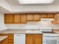 1029 E 8th Ave 1102 Denver CO-large-012-008-Kitchen-1500x1000-72dpi