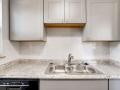 1520 Olive Denver CO 80220 USA-small-013-039-1520 Kitchen-666x445-72dpi