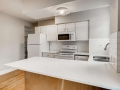 215 E 11th Ave C4 Denver CO-small-010-012-Kitchen-666x444-72dpi