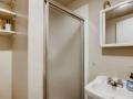 2163 amp 2165 S Gilpin Denver-small-020-010-Primary Bathroom-666x445-72dpi