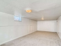 2240 S Clermont Street Denver-small-022-015-Lower Level Living Room-666x445-72dpi