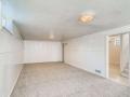 2240 S Clermont Street Denver-small-023-028-Lower Level Living Room-666x445-72dpi