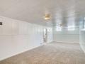 2240 S Clermont Street Denver-small-024-021-Lower Level Living Room-666x445-72dpi