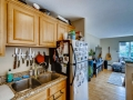 2345 Clay Street 201 Denver CO-small-014-017-Kitchen-666x445-72dpi