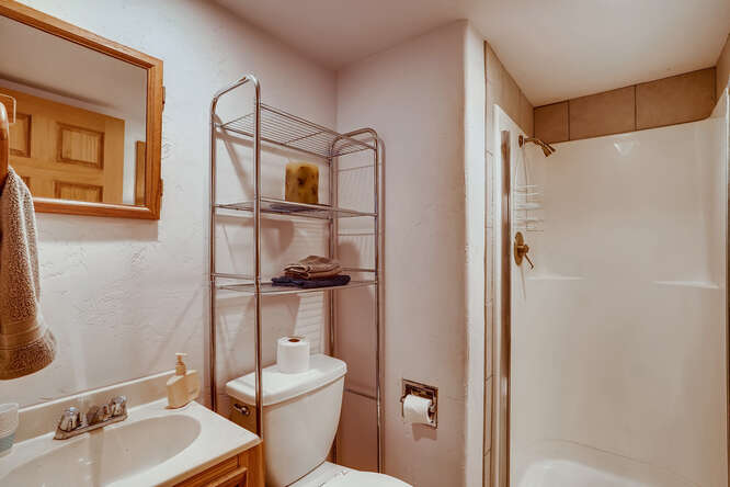 2486-S-Dillon-Street-Aurora-CO-small-018-018-Lower-Level-Bathroom-666x445-72dpi
