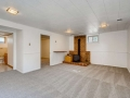 3403 S IVANHOE WAY Denver CO-small-019-017-Lower Level Family Room-666x445-72dpi