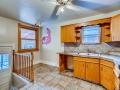 342 S Downing Street Denver CO-small-013-005-Kitchen-666x445-72dpi