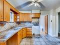 342 S Downing Street Denver CO-small-015-015-Kitchen-666x444-72dpi