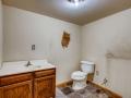 342 S Downing Street Denver CO-small-025-013-Lower Level Bathroom-666x445-72dpi