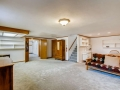 430 S Newport Way Denver CO-small-022-026-Lower Level Recreation Room-666x444-72dpi