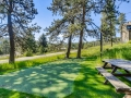 4961 S Olive Road Evergreen CO-small-028-028-Putting Green-666x444-72dpi