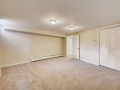 5000 E 2nd Ave Denver CO 80220-small-026-023-Lower Level Family Room-666x445-72dpi