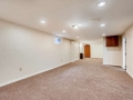 7777 S Dover Street Littleton-small-021-021-Lower Level Family Room-666x444-72dpi
