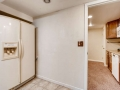 7777 S Dover Street Littleton-small-023-013-Lower Level Kitchen-666x444-72dpi