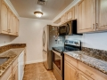 800 Pearl St 709 Denver CO-small-013-015-Kitchen-666x444-72dpi