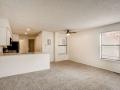 942 S Dearborn Way 5 Aurora CO-small-004-007-Living Room-666x444-72dpi