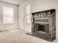 942 S Dearborn Way 5 Aurora CO-small-024-023-Living Room Fireplace-666x445-72dpi